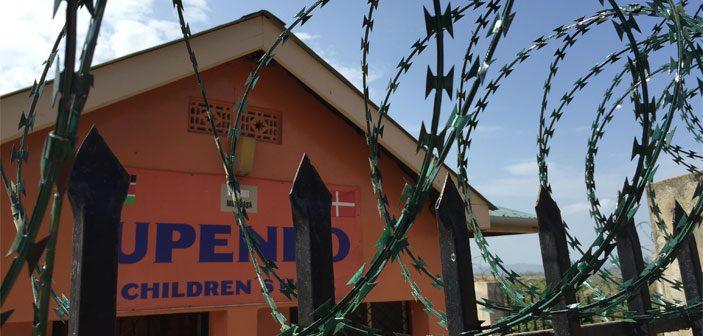 Pigtråd på hegnet